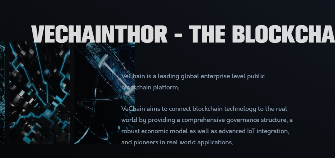 Vechain-Thor-coin-review
